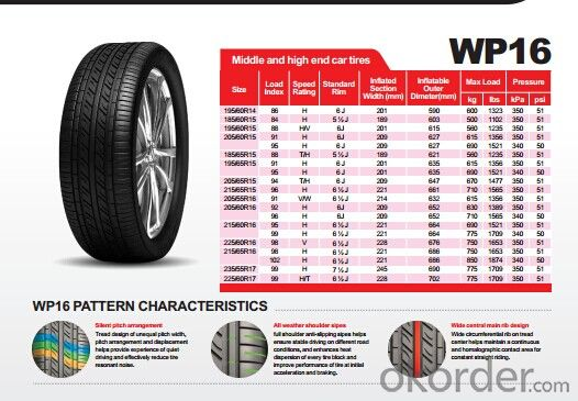Passager Car Radial Tyre WP16 with Good Quality