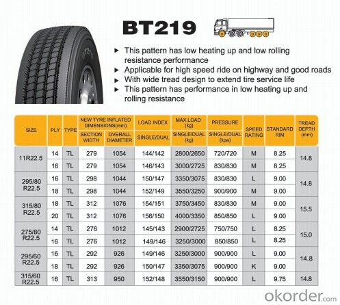 Truck and Bus Radial Tyre with High Quality BT219