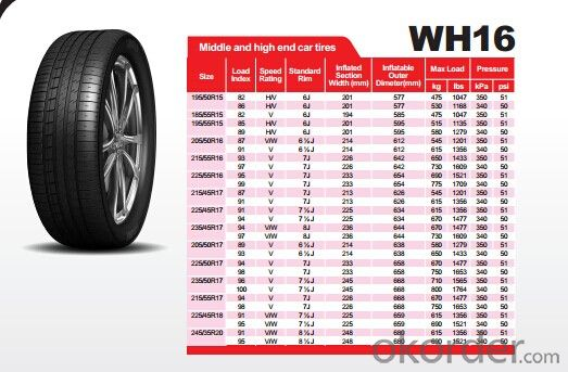 Passager Car Radial Tyre WH16 High Speed