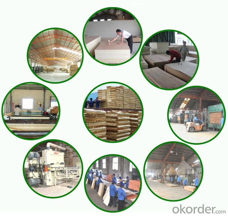 WOOD GRAIN  POLYESTER FACED PLYWOOD for FURNITURE