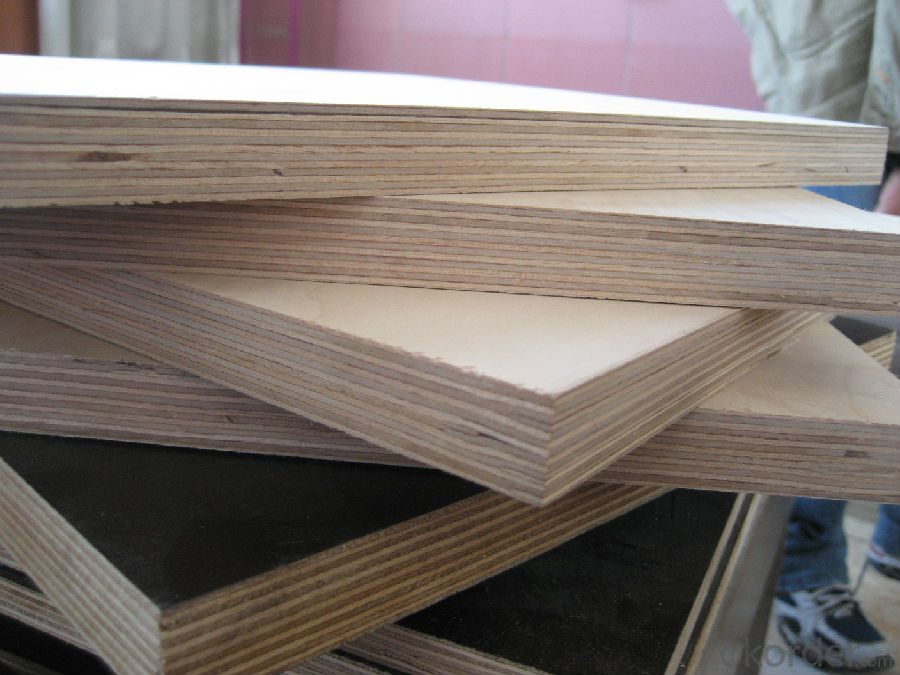 Brown Film Faced Plywood Birch Wood Core