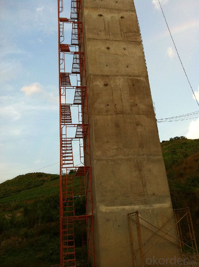 Walk  Through Scaffold /The door frame ladder