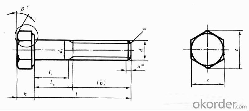 DIN913/933 8.8 grade hex bolt