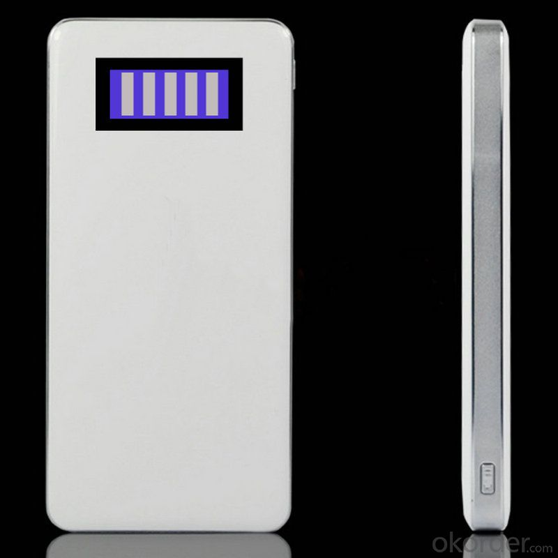 Hot Sellable 12000mAh Power Bank (NSPB-J02)