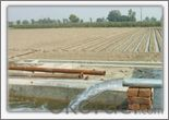 Agricultural Irrigation in Pakistan