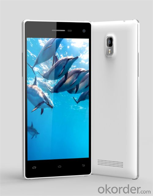 Clean & Cear 1280*720 CE/Rohs Smartphone With 3000mAh Lithium Battery Long Life