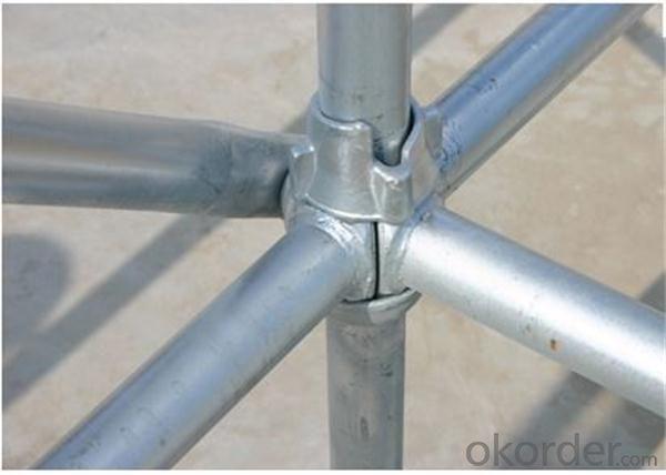 best price Galvanized  cuplock scaffolding