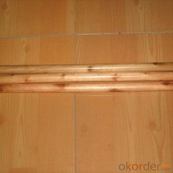 Wooden Broom Handle with Plastic Cap No Hook and Eco-Friendly Eucalyptus Wood Timber