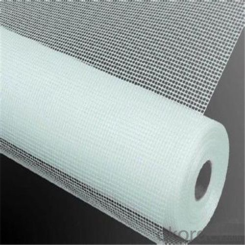 Fiberglass Mesh High Qualified Best Priced