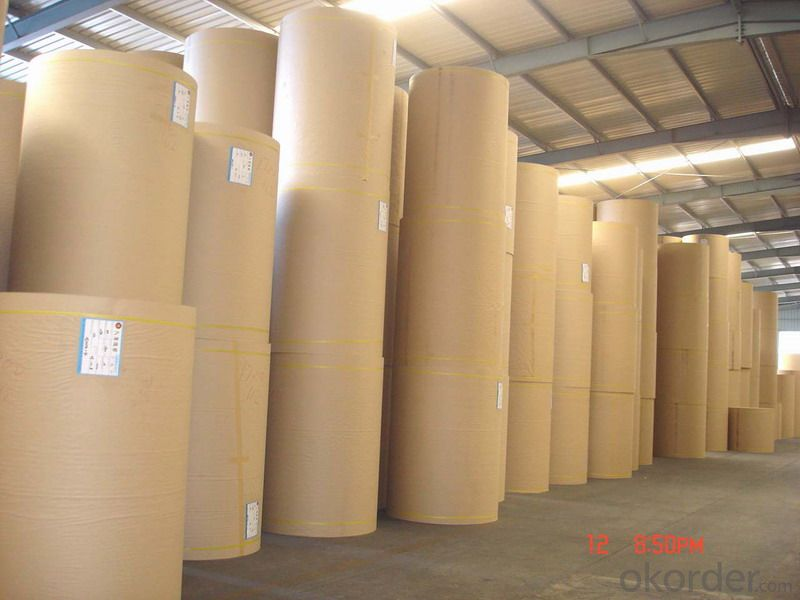 Kraft Paper with Best Price
