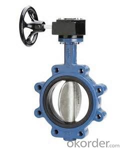 Butterfly Valve DN300 Turbine Type BS 4531 Made in China
