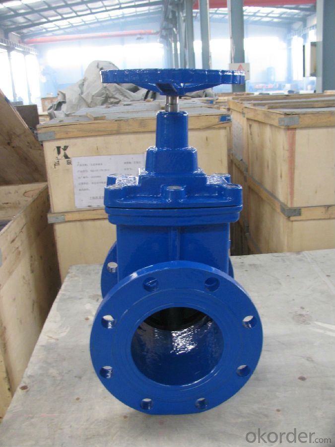 Ductile Iron Gate Valve Hot sale top quality DN40 - 500