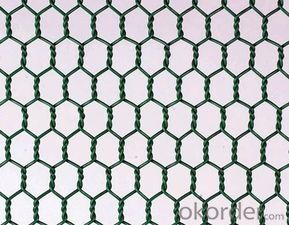 Hexagonal Wire Netting Galvanized /PVC Coated with Good Quality