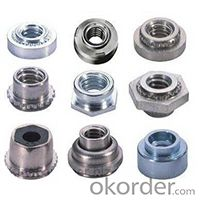 Zinc Nuts Hardware Fittings 2015 New Product with Customised Size