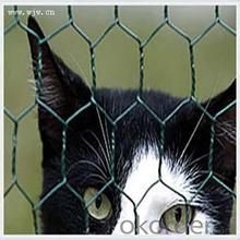Hot Sale Galvanized Chicken Mesh Factory PVC Coated Wire Mesh with Good Qulaity