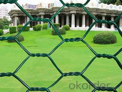 Hexagonal Wire Netting H.D and Electro Galvanized /PVC Coated with Good Quality