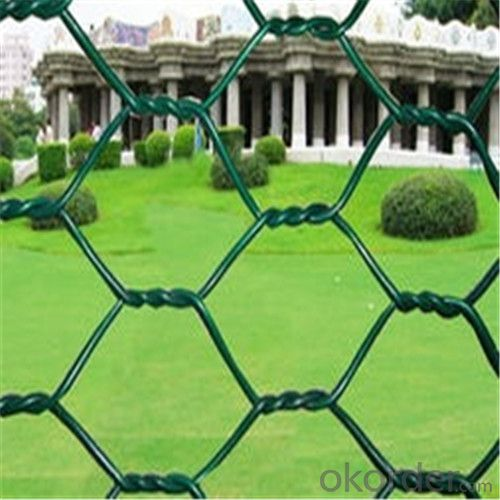 Chainlink Wire Mesh Galvanized or PVC Coated for Safety Factory Direct Price