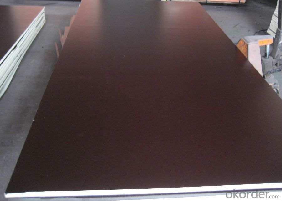 Film Faced Plywood for Construction Marine Plywood