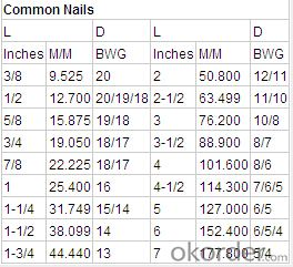 Common Iron Nails Industrial Nails or Furniture Nails