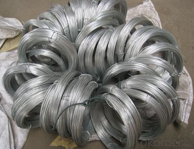 Common Nails Wire Nails Iron Nail China Good quality