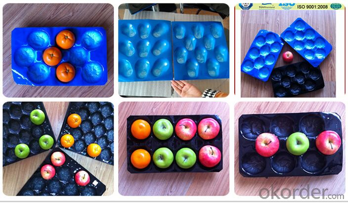 PP Navel Fruit Liner Container with Different Colors