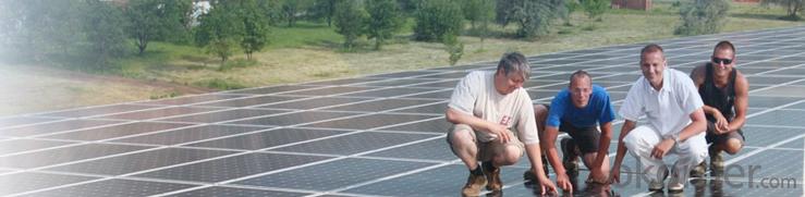 Polycrystalline  Solar  Module SP660-240W