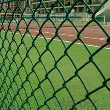 Chain Link Fence/Chainlink Fence/Wire Fence/Mesh Fence/Chainlink Wire Mesh