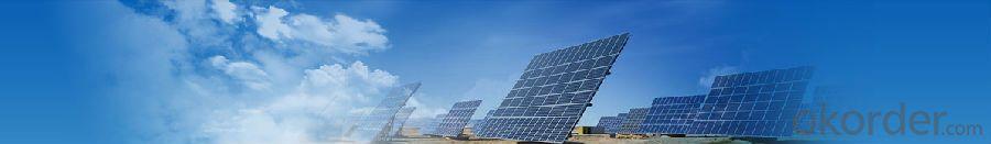 Monocrystalline Solar  Module   SM596-245W