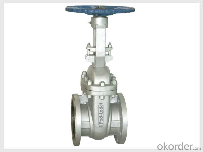Gate Valve of Large Diameter With Bronze