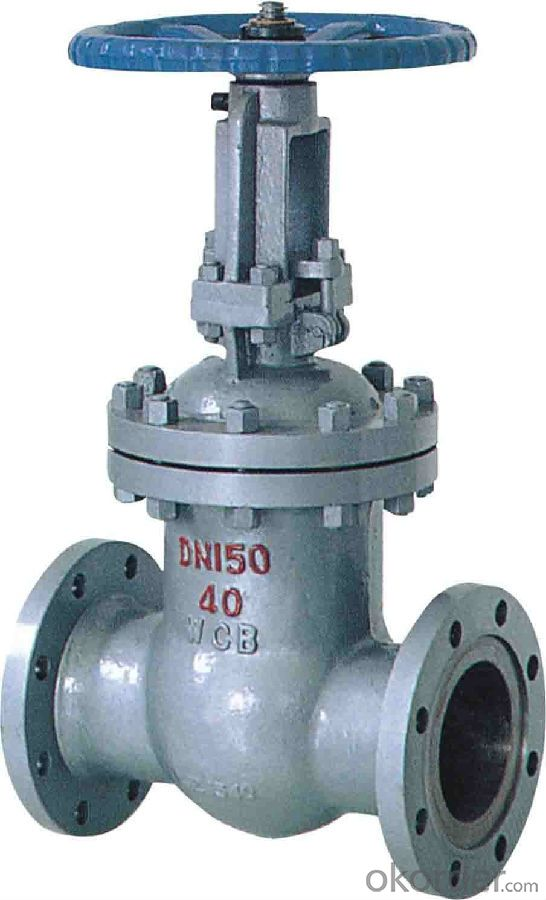 Gate Valve, Various Model, Professional Leading Manufacturer