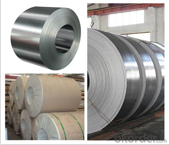 Stainless Cold Steel Sheet& Coil (304/316)
