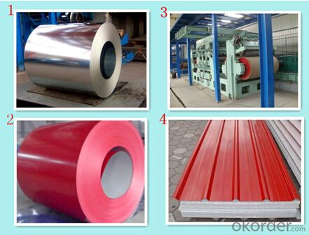 Prepainted Galvanized Steel Coil Dx51d+Z