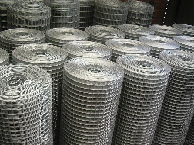 Beautiful  Grid  Wire  Mesh -- China's glory
