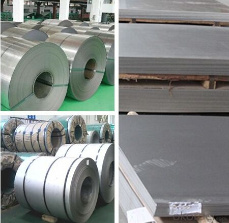 Galvanized Rolled Steel Coils Competive Price