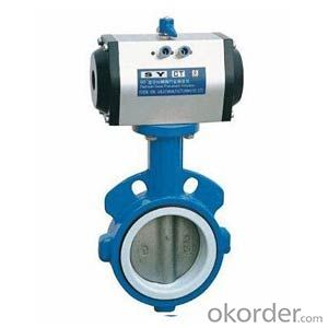 Butterfly Valve on Sale with Worm Gear Actuated Flange Triple Eccentric from China