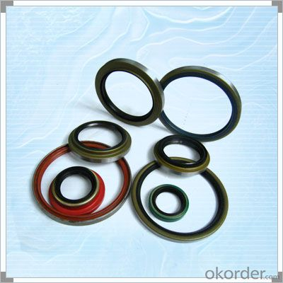 Various Size NBR/SLILOCN Oil Seal for Machine