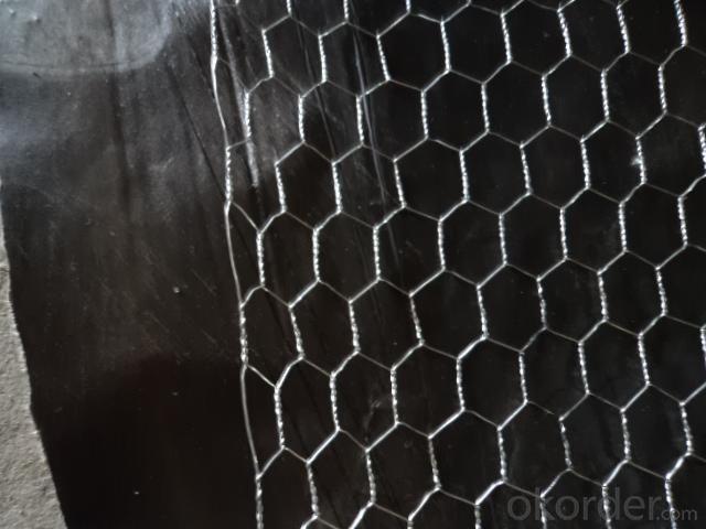 Hexagonal wire mesh、Six angle net、Galvanized angle six