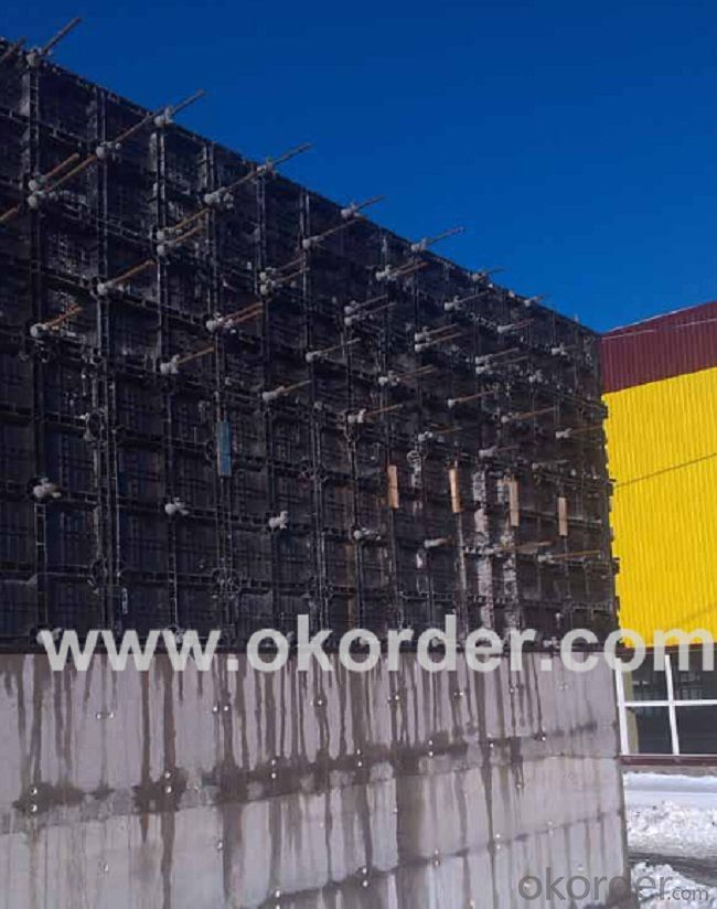 10 X 60 mm Black Plastic Modular Concrete Wall Formwork Panel for Straight Wall