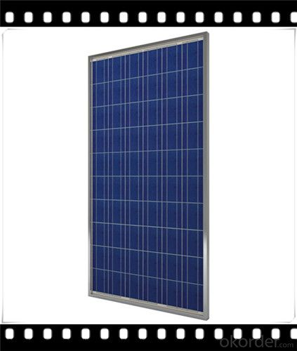 245W Poly solar Panel Mediuml Solar Panel Hot Selling Solar Panel CNBM