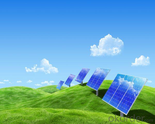 250W  Poly solar Panel with 25 Years Warranty CNBM