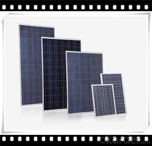245W Poly solar Panel Medium Solar Panel Manufacturer in China CNBM
