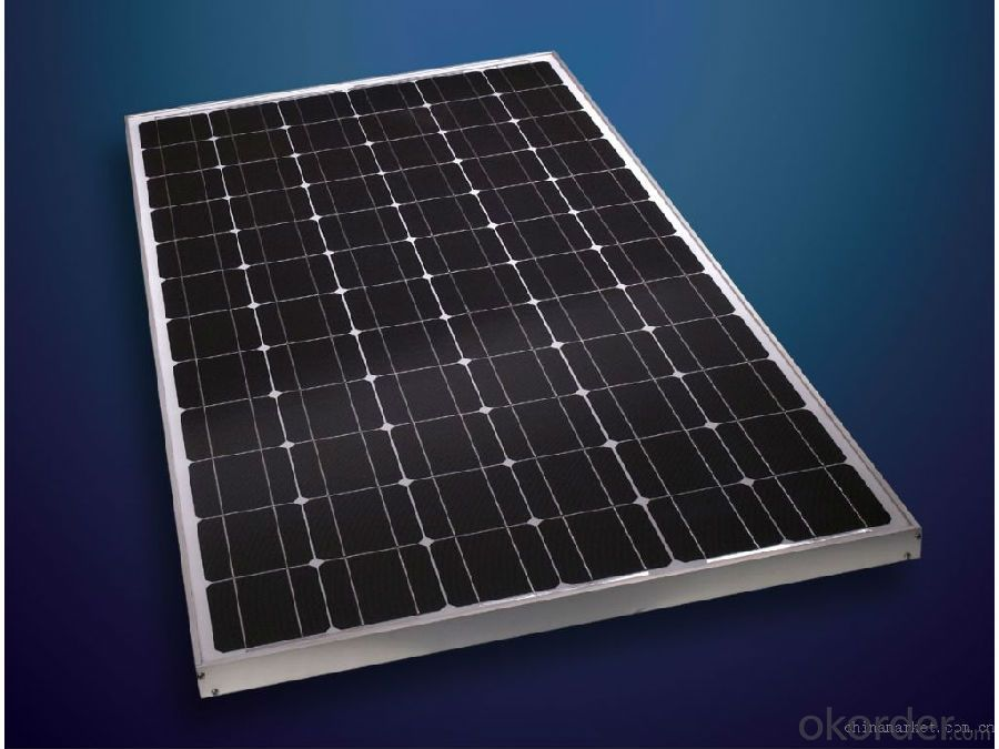 250W Monocrystalline PV Solar Panel with Wholesale Price CNBM