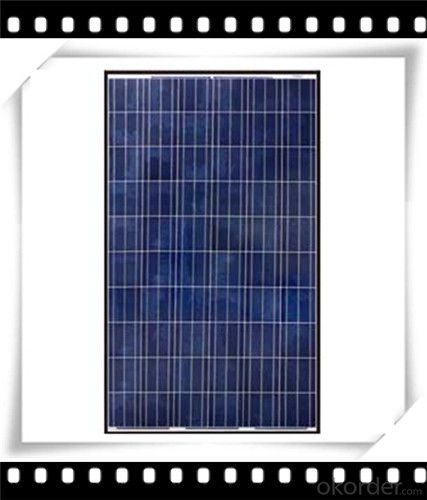 250W Poly solar Panel Medium Solar Panel Newest Solar Panel CNBM