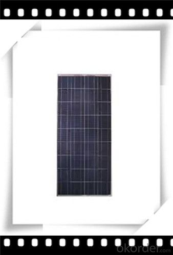 310W Poly solar Panel Medium Solar Panel Newest Solar Panel CNBM