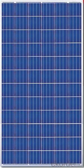 310W  Poly solar Panel Medium Solar Panel Factory Directly Sale CNBM