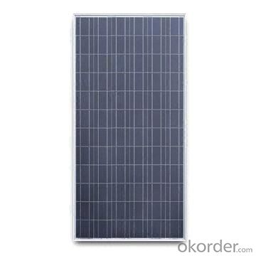75W  Poly solar Panel Small Solar Panel Factory Directly Sale CNBM