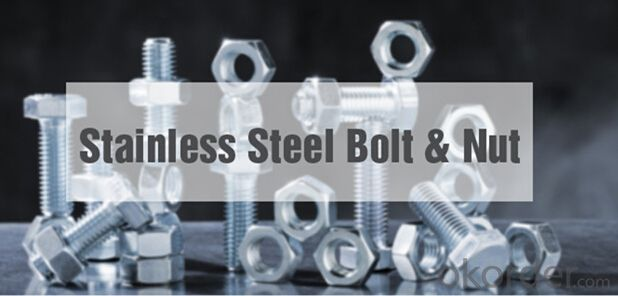 High Strength Bolt for  the Steel Structure
