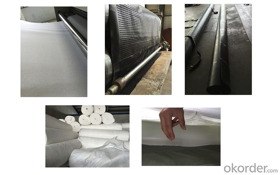 Anti-Skid Needle Punched Non Woven Geotextile with High Strength CMAX