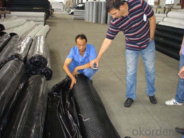 Fiberglass Geogrid with High Strength Manufactory