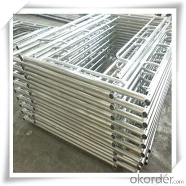 Hot Dip Galvanized Frame Scaffolding 1219*1524*42*2.0 CNBM